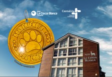 La Corza Blanca, hotel Dog Friendly en Alto Campoo